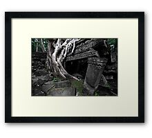 Entwined, Cambodia Framed Print