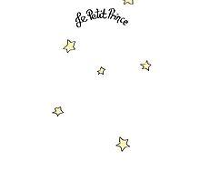Le Petit Prince by Efe Turkyilmaz