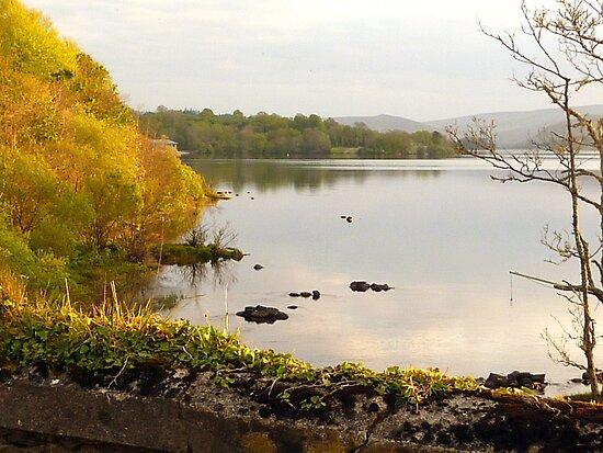 Evening On Lake Gartan by Fara