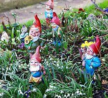 Garden Gnome by vivendulies