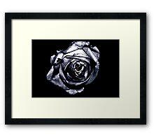 Rose Retina  Framed Print