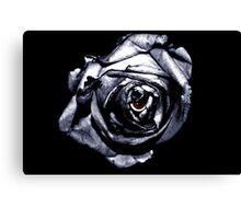 Rose Retina  Canvas Print