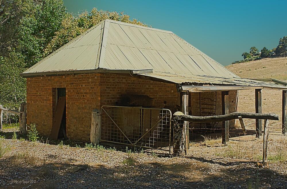 Blackwood Barn, Bridgetown, Western Australia #2 by Elaine Teague