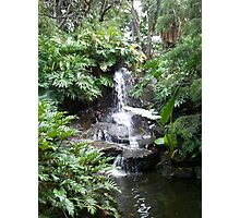 Brisbane Botanic Gardens Waterfall Photographic Print