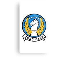2955 CLSS - Air Force Metal Print