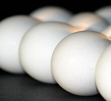 Eggs by Henrik Lehnerer