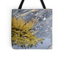 Seaweed Amongst the Rocks Tote Bag