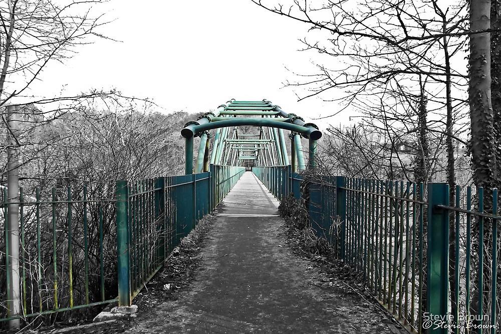 David Livingstone Bridge by Stevie B