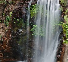 Litchfield National Park: Florence Falls I by Adam Le Good
