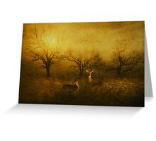 Dawns Early Light Greeting Card