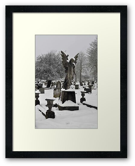 Angel in the Snow ~ St Albans, Hertfordshire, 2013 by Samantha Creary