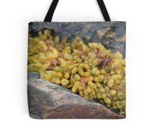 Seaweed Between Rocks Tote Bag