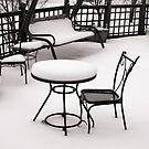 Winter Stillness by Sandra Lee Woods