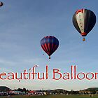 Beautiful Balloons by Gene Walls
