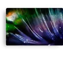 Abstract composition of colours Canvas Print