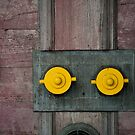 Yellow 3 by SandrineBoutry
