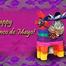 Cinco de Mayo Bunny Rabbit by jkartlife