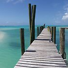 Bahamas, Rum Cay marina jetty by Jola Martysz