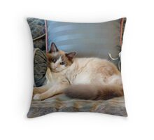 A Picture of Feline Serenity Throw Pillow