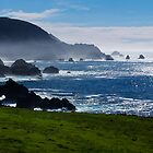 Big Sur by Yukondick
