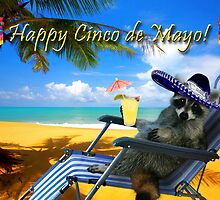 Happy Cinco de Mayo Raccoon by jkartlife