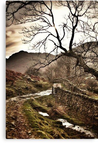 The Walk by Oli Johnson