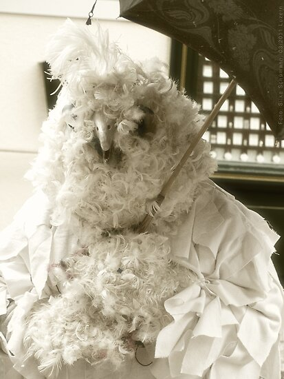 Carneval: Big Bird by vivendulies