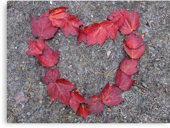 Happy Valentine's Day, Canadian Style! by Tracy Wazny