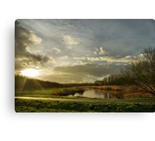 This morning at Diemer Woods Canvas Print