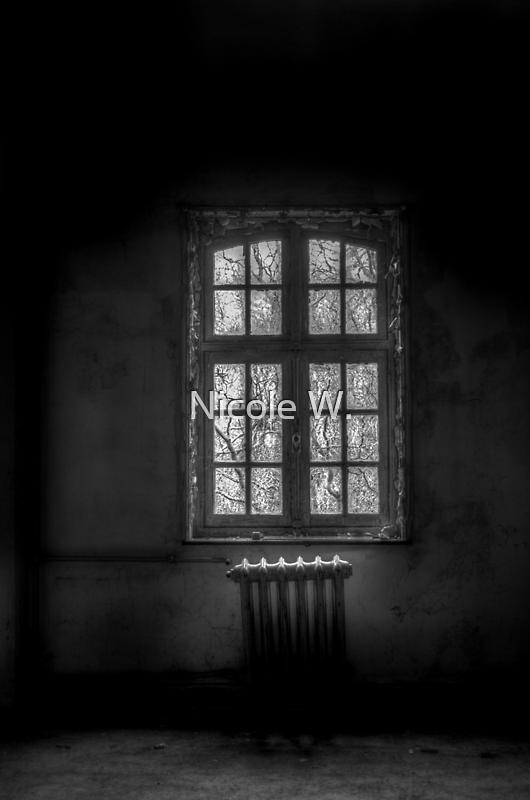 Decay by Nicole W.