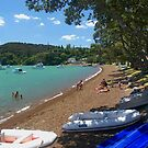 Beach at Russell, Bay of Islands, New Zealand.....! by Roy  Massicks