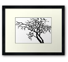 Tree of seasons Framed Print