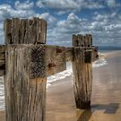 Cattle Jetty Ruins  by Scott Sheehan