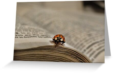 Book bug by vigor