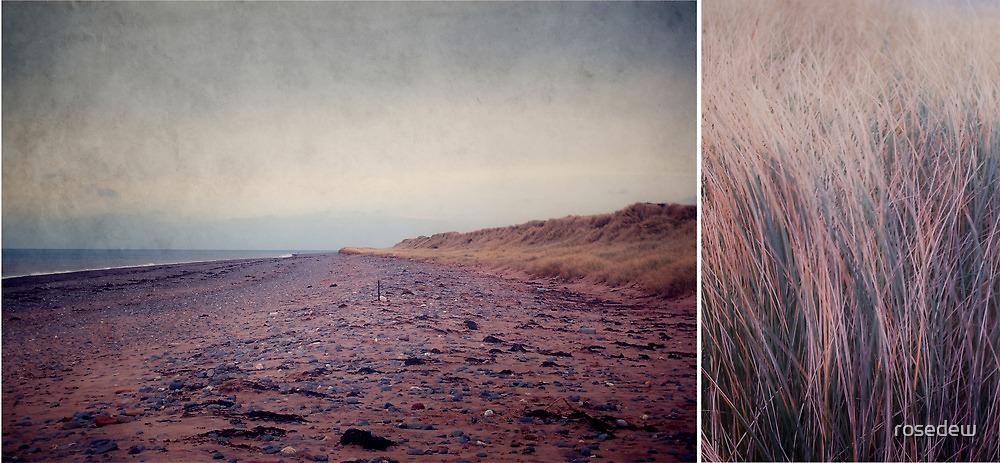 Beach by rosedew