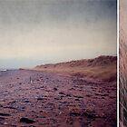 Beach by ROSE DEWHURST