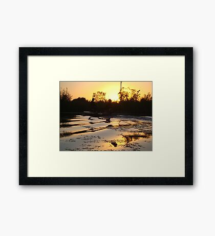 Fish Stories Framed Print