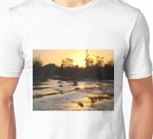 Fish Stories T-Shirt