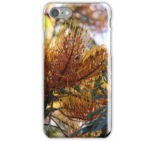 Flower of Australia iPhone Case/Skin