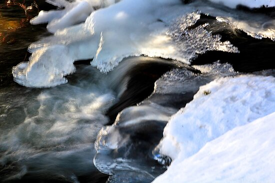 Ice Light by Barbara  Brown