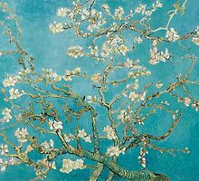 Vincent Van Gogh Almond Blossoms at St. Remy by PixDezines