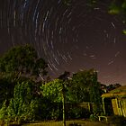 """Star Trails"" in my garden by DavidONeill"