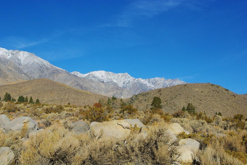 Majestic Sierra Nevada by Claudio Del Luongo