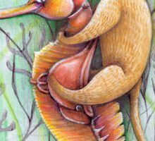 seahorse catfish  Sticker