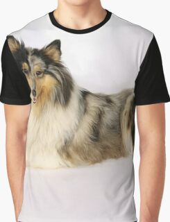Toy Collie Graphic T-Shirt