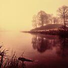 Elterwater - Cumbria by David Lewins