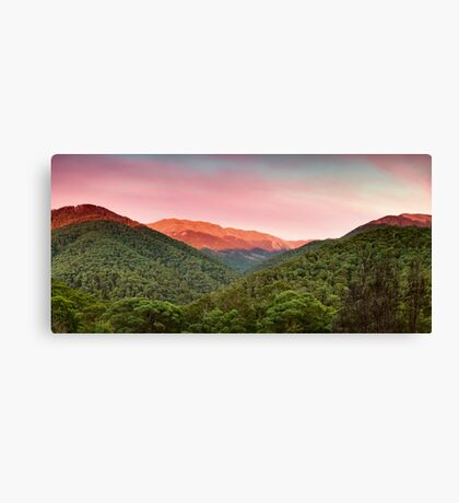 A Natural Highlight Canvas Print