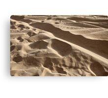 sand in the desert Canvas Print