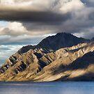 Fox Glacier, New Zealand by Kutay Photography
