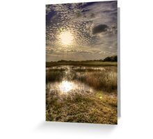 Everglades Afternoon Greeting Card